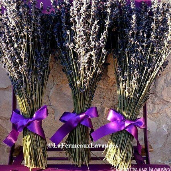 Bouquet fleurs de Lavande ruban violet